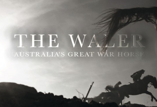 The Waler: Australia's Great War Horse, This Thursday, July 23rd, at the World War I Museum