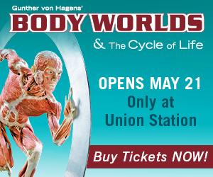 Body Worlds – Sidebar