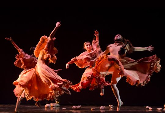 Wylliams/Henry Celebrates a Quarter-Century of Excellence in Dance