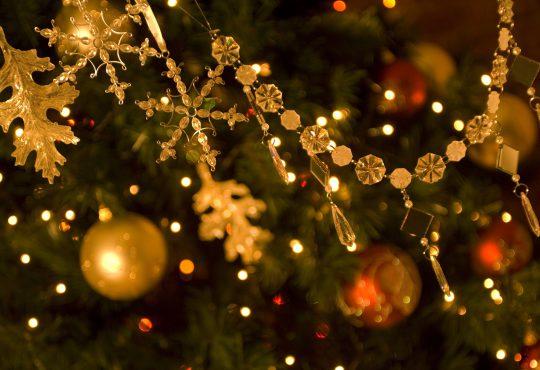Editor's Weekend Calendar Picks, November 30 – December 3