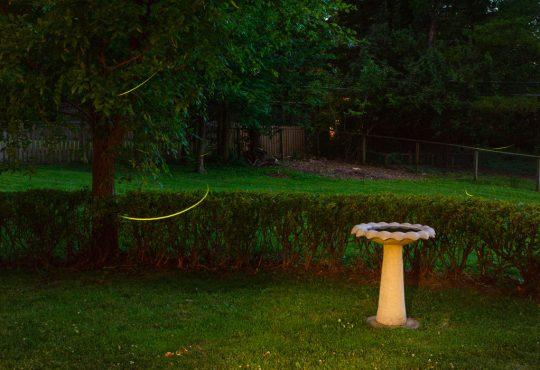 "Artist Pages – Deanna Dikeman: ""Sprinklers, Birdbaths and Puddles"""
