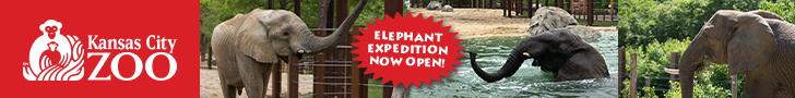 Kansas City Zoo – General Leaderboard