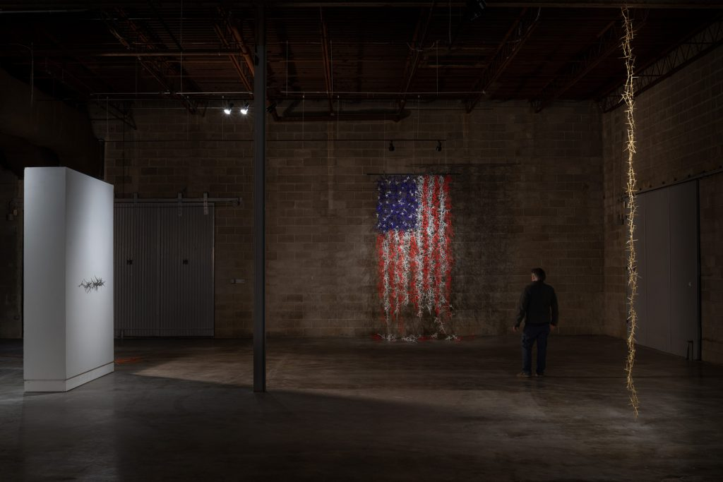 Schempf shot Susan White's January 2021 exhibit at Studios Inc, which included a tattered American flag made from honey locust thorns.  (photo by E.G. Schempf)